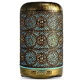 SALKING Aroma Diffuser, 260ml Metall Aromatherapie Diffusor für