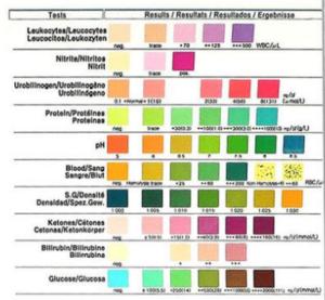 Urin-Teststreifen Harnsäure Wert bestimmen