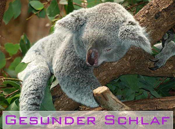 Gesunder Schlaf natürliche Mittel und Rituale helefen bei Schlafproblemen